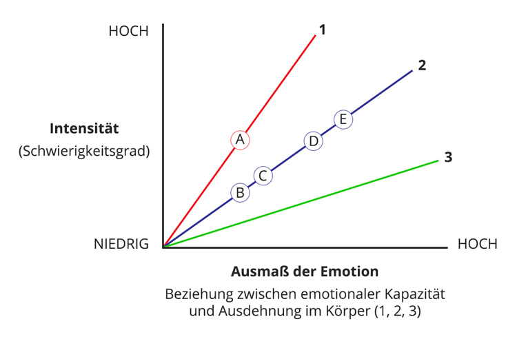 Integral Somatic Psychology Affect Tolerance