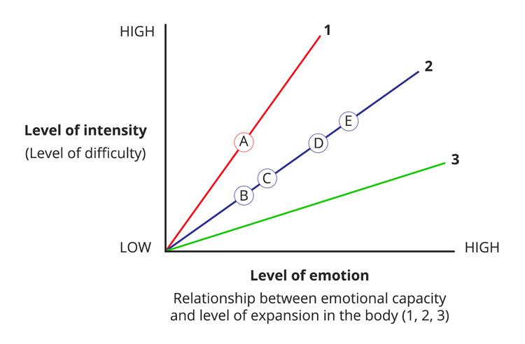 Affect Tolerance Integral Somatic Psychology