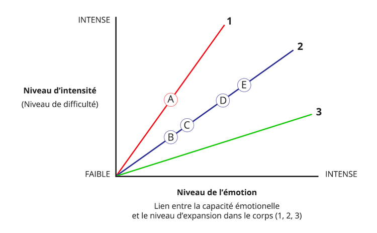 Integral Somatic Psychology Affect Tolerance Graph Français