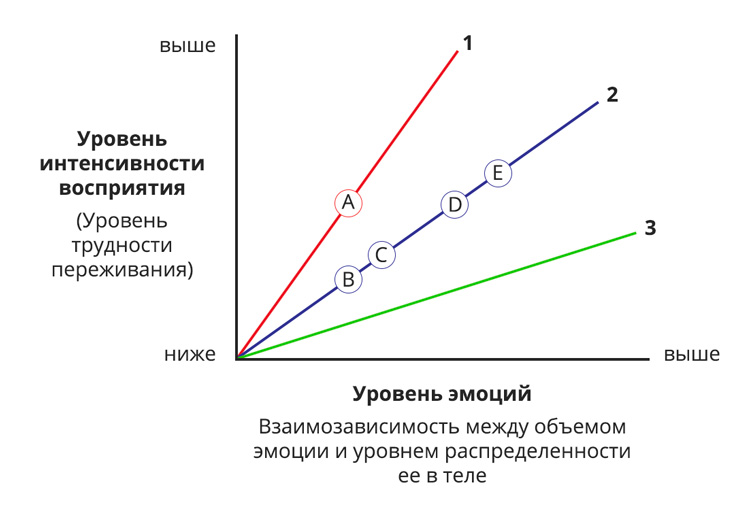 Integral Somatic Psychology Affect Tolerance Graph